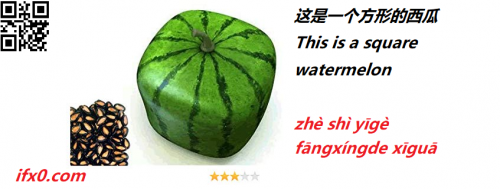 this-is-a-square-watermelon-in-Chinese.png